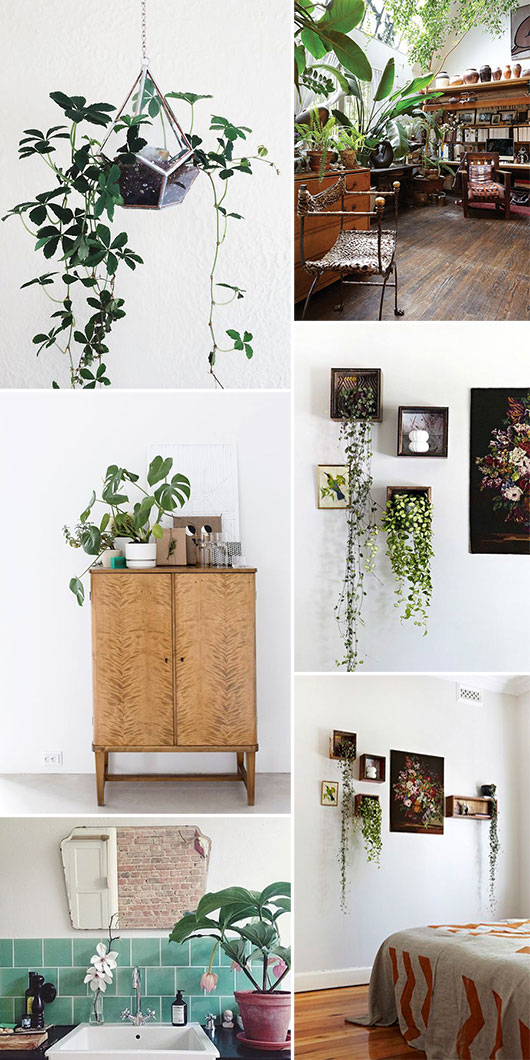 inspiring interiors with plants. / sfgirlbybay